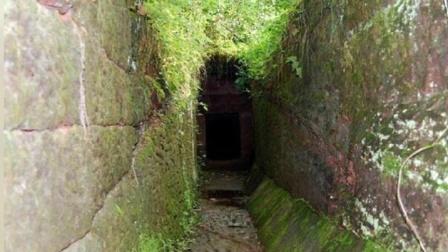 四川石洞发现悬棺古墓, 专家竟挖出, 两千年前神秘摇钱树