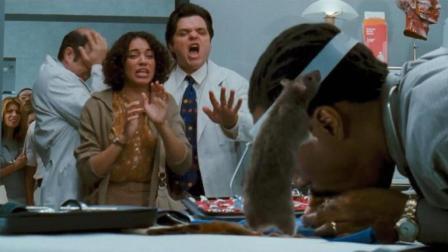 男子能和动物说话, 当上兽医给老鼠做人工呼吸, 把周围人看的崩溃抓狂!