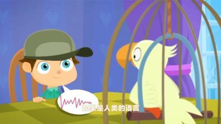 螺丝钉第三季 鹦鹉学舌 鹦鹉变成录音机