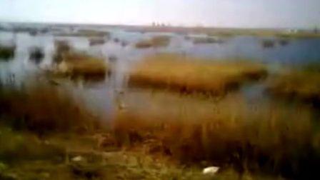 湿地生态保护区
