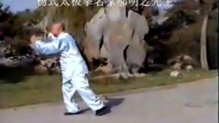 杨式太极拳名家郝明之先生拳架演示