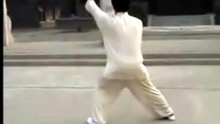 韩清民85式杨式太极拳(第3段)