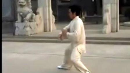 韩清民85式杨式太极拳(第4段)