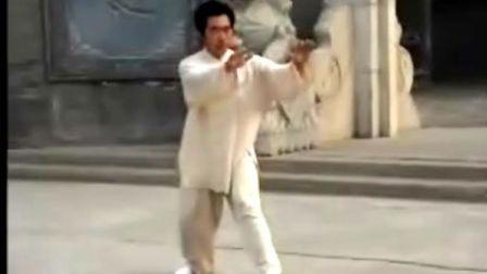 韩清民85式杨式太极拳(第6段)