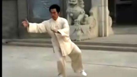 韩清民85式杨式太极拳(第5段)