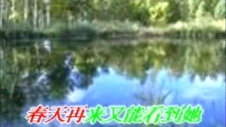 冰凌花(消音版)  王冰洋