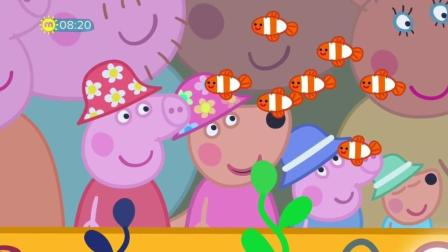 Peppa Pig Series 5 Episode21 The Great Barrier Reef加舟英语小猪佩奇第5季英文高清