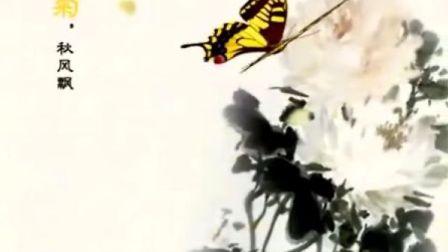 古筝 呼吸 南雁古筝标题片
