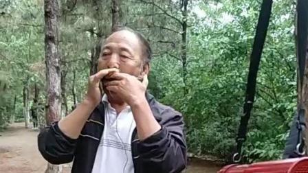 小公园内吹口琴的老人