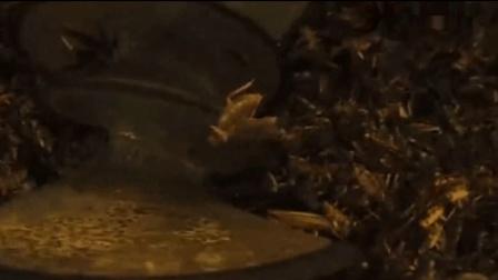 三分钟看完《雪国列车》用蟑螂做的蛋白质块维持他们十多年的生活