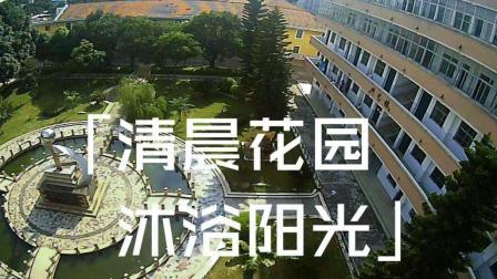【FPV|小方狗】小穿越机·清晨花园·沐浴阳光