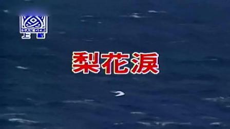 高胜美-梨花泪-国语-双音轨480p