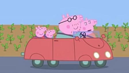 小猪佩奇开卡丁车赛车比赛 小猪佩奇动画片