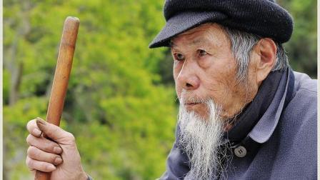 农农村老人说: 这几种动物进家, 千万不能打, 你知道什么原因吗?