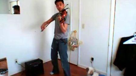 Viva La Vida (violin2003)