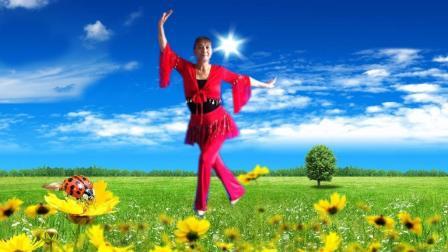 凤之韵广场舞跳跳乐第十三套快乐舞步健身操第三节