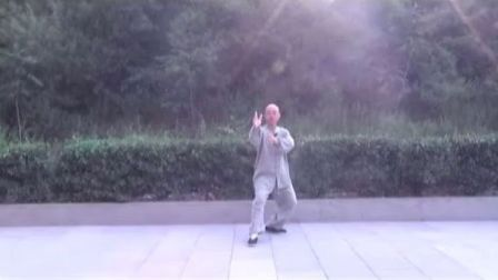 正宗杨氏太极拳85式教学(精讲二)  永年李占英 2012年新版