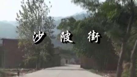 沙陂街(阳山话解说)