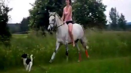 骑马遛狗-水中嬉戏