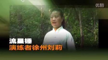 流星锤徐州刘莉武术演练视频资料