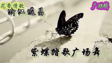 紫蝶广场舞 花香情歌(歌词字幕;动作分解)(清晰)