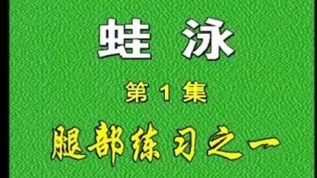 经典 小学生儿童游泳教学 蛙泳 6集-1 四种泳姿全25集1集18分钟