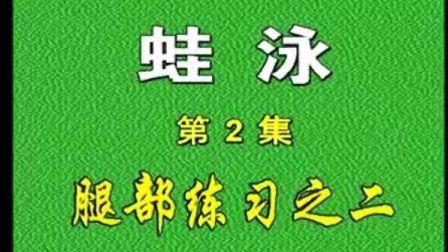 经典 小学生儿童游泳教学 蛙泳 6集-2 四种泳姿全25集1集18分钟