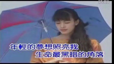 王杰--沉默暴风(高清KTV版)