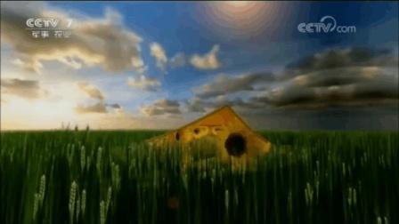 十星红央视广告剪辑版