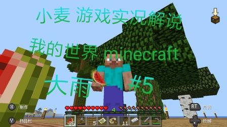 【小麦/游戏实况解说】《我的世界/minecraft》大雨 #5