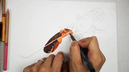 拙画一刻半: 超写实彩铅手绘教程, 如何画好大龙虾?