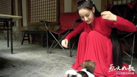 【迪丽热巴】如歌花絮-片场的小萌狗爱不释手