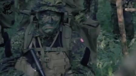 中国CQ突击步枪, 霸气亮相瑞典军事训练