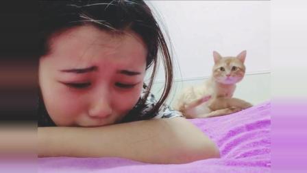 妹子每次哭, 猫咪都会过来安慰她, 真的非常有爱了