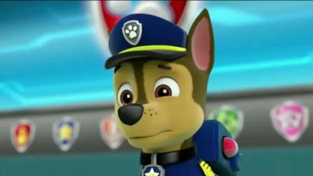 《汪汪队立大功》莱德不在阿奇就是队长, 狗狗们不要吵了
