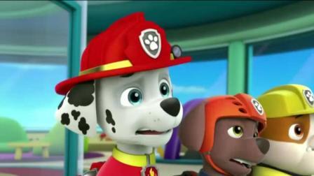 《汪汪队立大功》莱德向狗狗们求救, 狗狗们怎么头晕呢