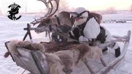 二哈和驯鹿也能上战场, 佩服战斗民族的驯兽能力