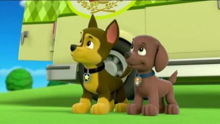 《汪汪队立大功》加比怎么把平板也吞了, 莱德夸狗狗们很棒呢