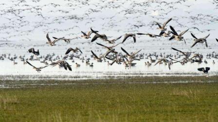 看安徽: 《养生福地》池州升金湖