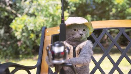 带着猫咪去参加钓鱼大赛, 到底能不能拿冠军呢?