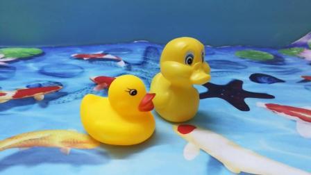 《小鸭子成长记》小鸭子终于长大了, 今天鸭妈妈决定教小鸭子学游泳! 小朋友快来看看吧!