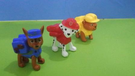 《熊出没》今天汪汪队三个成员来看光头强, 小朋友快来看看是谁来了吧! !