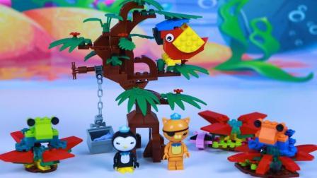 海底小纵队箭毒蛙的栖息地积木拼装玩具