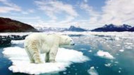 当所有的冰都融化,地球会发生什么变化?