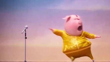 《欢乐好声音》邀您来一场动物世界的音乐盛宴
