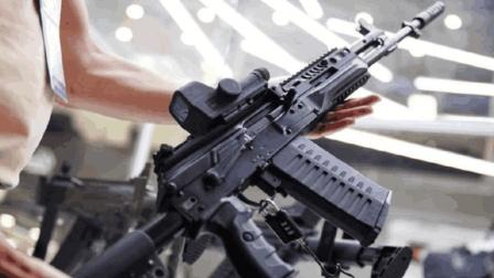 AK系列再添高颜值步枪AK-308, 专业人士表示推广前景并不大!
