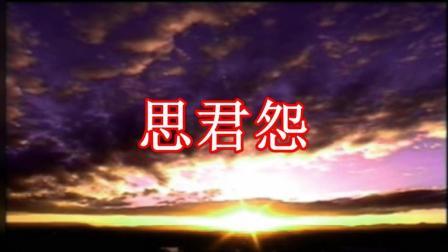 张平福 - 思君怨  伴奏  为了你影音