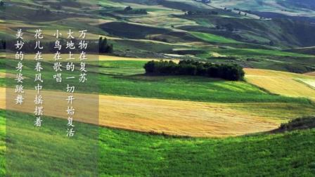史上最优美的轻音乐精选—故乡的原风景