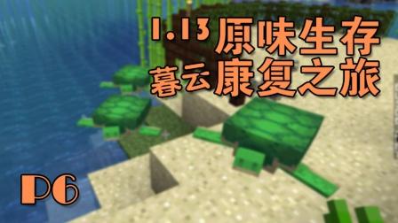 暮云1.13原味生存康复之旅P6 因为参观而错过海龟出世