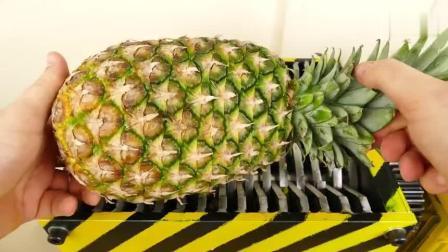 菠萝的外皮有多硬? 老外用粉碎机测试